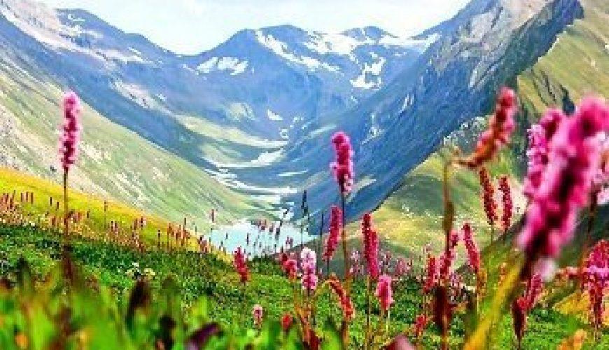 Best Time To Visit Jammu & Kashmir