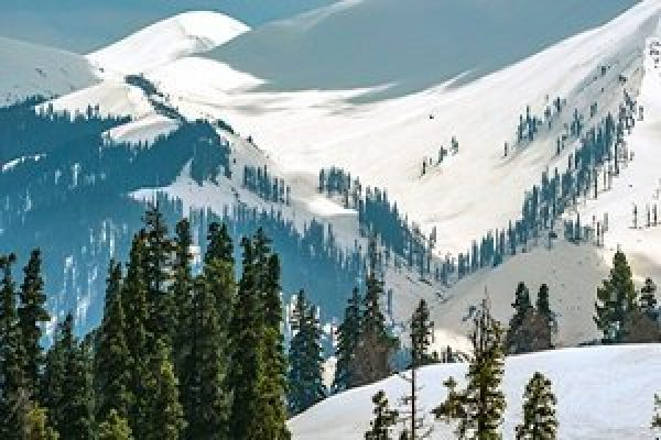 Weekend in Gulmarg Srinagar Honeymoon Trip